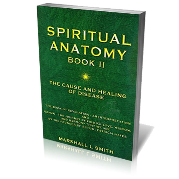 Picture of Spiritual Anatomy II by Marshall Smith